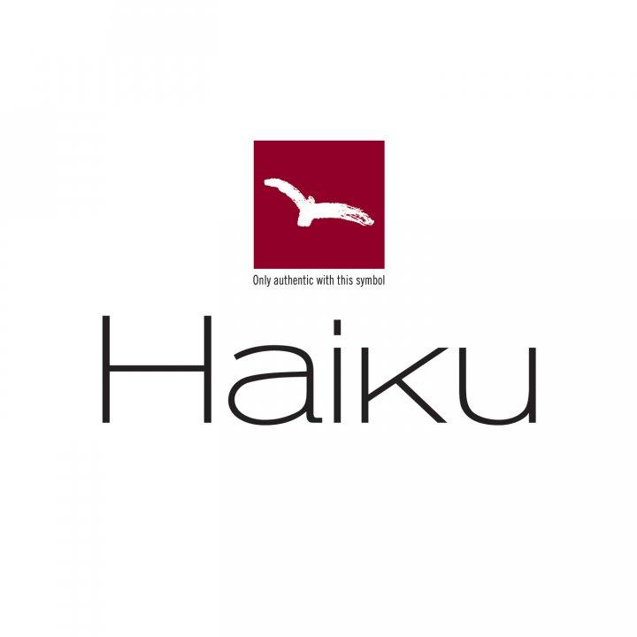 H-16 HAIKU Santoku Messer mit Kullenschliff, 17 cm 2