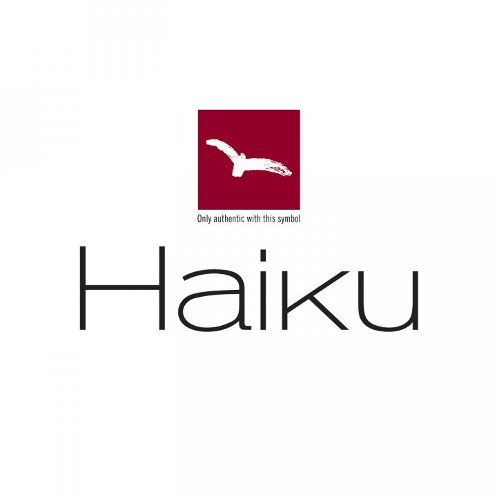 H-07 HAIKU Sashimi Messer, 20 cm 2