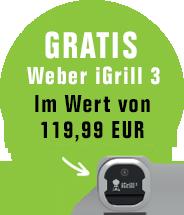 Gratis Weber iGrill 3