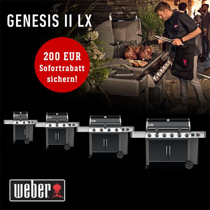 Weber Sommer Rabatt Aktion